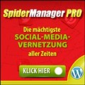 SpidermanagerPro intelligente Vernetzung der Social-Media-Portale